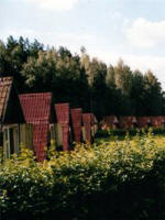 Санаторий ПРИДНЕПРОВСКИЙ Белоруссия  официальный сайт